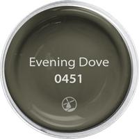 Evening Dove - 0451