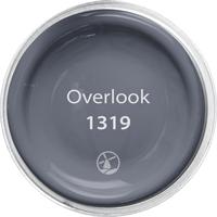 Overlook - 1319