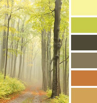 A Fairytail Forest Fall Color Scheme