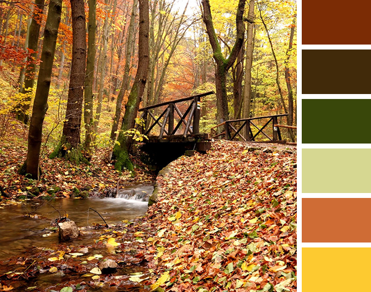 Best Color Combinations Nature