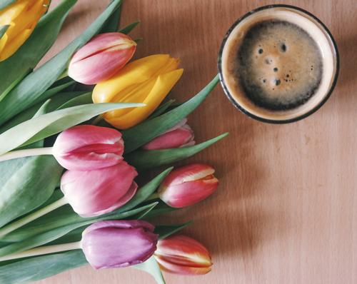 向春天问好